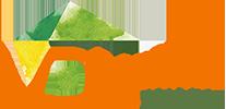 VDL-SERVICE Logo